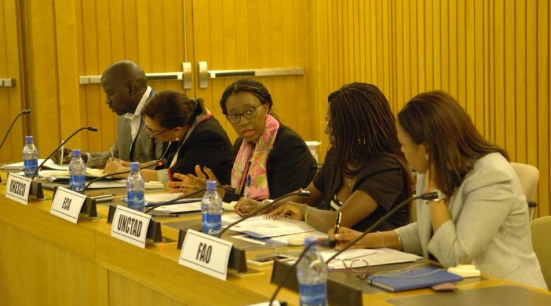 UN Agencies Discuss on How to Better Coordinate in Africa