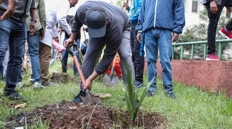 Diplomats to Partake in Tree Planting Campaign Monday