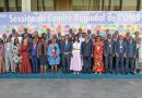Ministers Discussing Africa's Health Agenda in Brazzaville