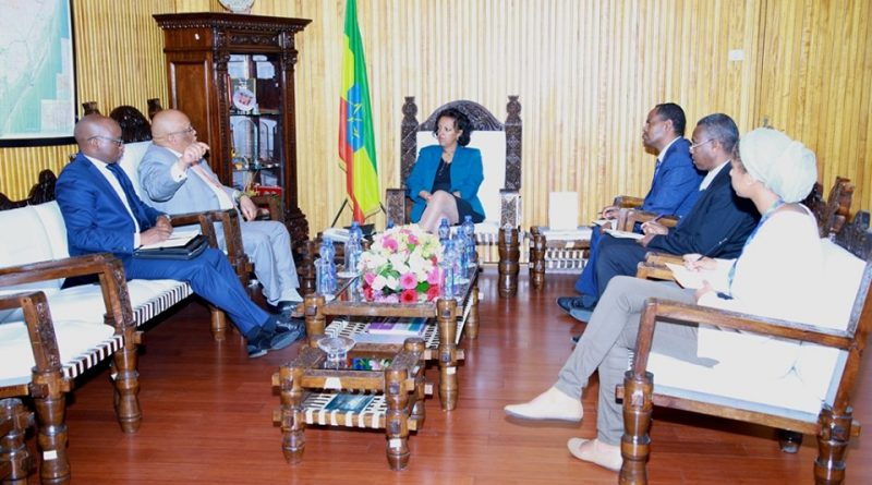 State Minister Hirut Confers with South African Ambassador to the FDRE