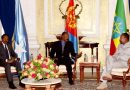 Ethiopia, Eritrea, Somalia Formulate Plan to Combat Common Threats
