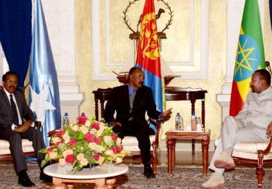 Ethiopia, Eritrea, Somalia Formulate Plan to Combat Common Threats