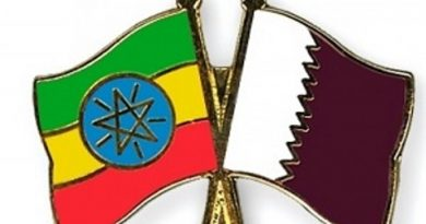 Qatari Businesses Comes to Ethiopia in Matchmaking Mission
