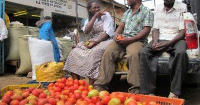 Kenyan traders turn to Ethiopia for tomato imports